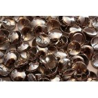 Metal Cover Buttons - Nickel 19mm - 100 Box